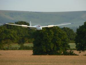 A glider landing in front of trees.