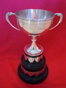 A silver cup trophy mounted on a base with attached shields.