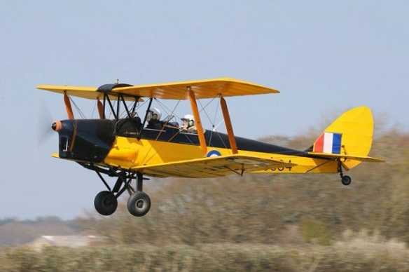 A side view of a yellow Tiger Moth in flight near the ground.